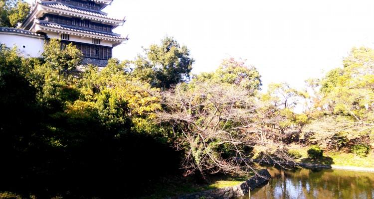 西尾城― なんと見事な天守閣…いえ、隅櫓です